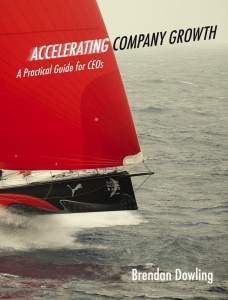 ACCELERATING COMPANY GROWTH: A PRACTICAL GUIDE FOR CEOs / Brendan Dowling